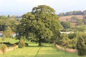 Bawdon Lodge Farm wedding venue
