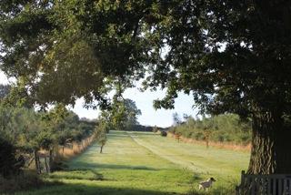 Bawdon Lodge Farm, outdoor wedding venue